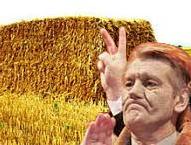 Ющенко предлагает отапливать Украину соломой, а Путин...